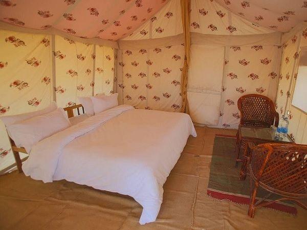 dangri desert safari camp jaisalmer