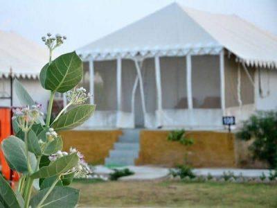 desert camp at jaisalmer